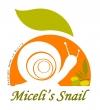 Miceli's Snail Allevamento Vendita Lumache