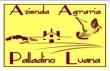 Azienda agricola Palladino Luana