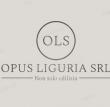 Opus Ligutia