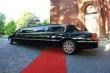 Noleggio limousine e auto americane....