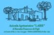 Agriturismo Alberobello azienda LAIRE