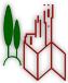 Guida Turistica Autorizzata di Siena