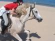 Reiterhof Cabus De Figus Turismo Equestre