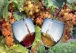 I migliori vini di IItalia