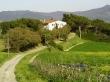 Agriturismo Al Germano, soggiorni in Toscana