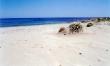 Camping Ermosa sul mare in Sardegna