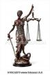 Avvocato esperto di diritto amministrativo